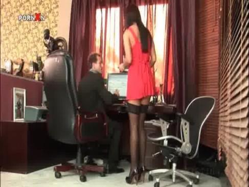 Mädchen zureiten porno